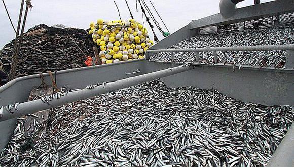 La entidad anunció que esta primera temporada de pesca de anchoveta (Engraulis ringens) y anchoveta blanca (Anchoa nasus) culminará el próximo 15 de agosto, según la Resolución Ministerial 263-2020-Produce. (Foto: Produce)