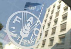 FAO advierte de un estancamiento en la reducción del hambre en Latinoamércia