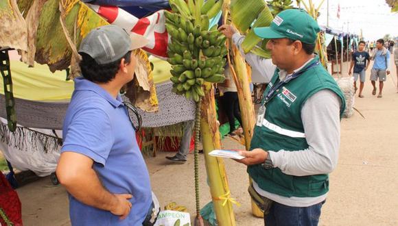 Se recomienda no ingresar al país material de propagación como plantas y partes vegetativas de banano, plátano o artesanías hechas con esos materiales, sin contar con la autorización del Senasa. (Foto: Minagri)