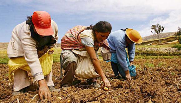 La medida facilitará el desembolso de S/ 600 millones para potenciar el agro. (Foto: Minagri)