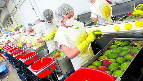 Los productos agropecuarios representan el 25.5% de las exportaciones peruanas a la UE. (Foto: GEC)