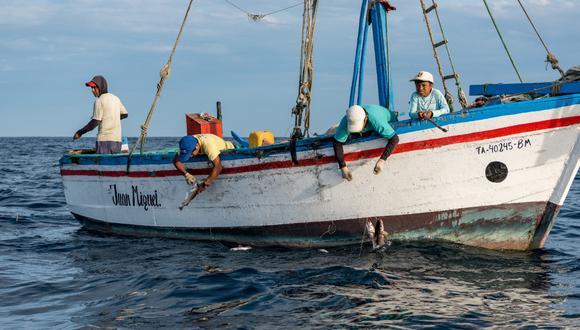 La cuota para consumo humano podrá ser modificado en función al seguimiento permanente de la pesquería de anchoveta que realiza el Instituto del Mar del Perú. (Foto: GEC).
