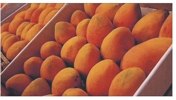 Inacal publicó esta semana una nueva norma técnica que fija estándares de calidad para la exportación de mango.