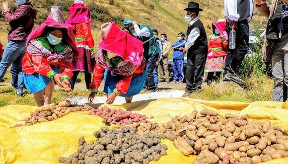 La restricción a los productos peruanos es porque autoridad sanitaria de Bolivia no puede inspeccionar importaciones por fallas en sus sistemas informáticos, dijo el Senasa. (Foto: GEC)