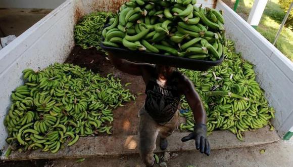Banano (Foto: Reuters)