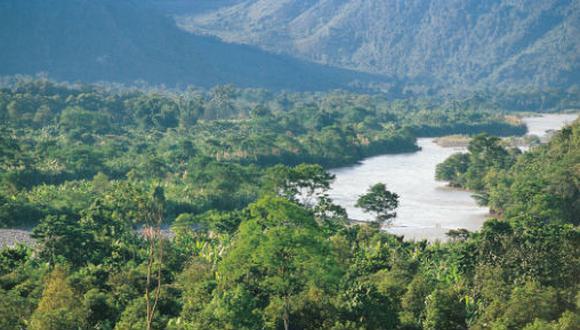 Reducir la deforestación es uno de los objetivos del programa Bosques.
