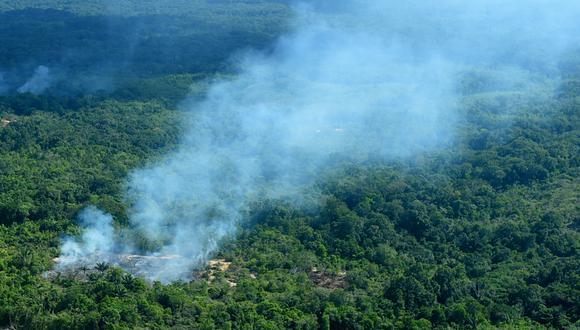 El Amazonas suma el 25% de la superficie del continente americano. (Foto: Chico Batata / DPA / dpa Picture-Alliance)