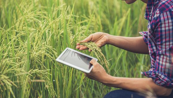 Agri food tech