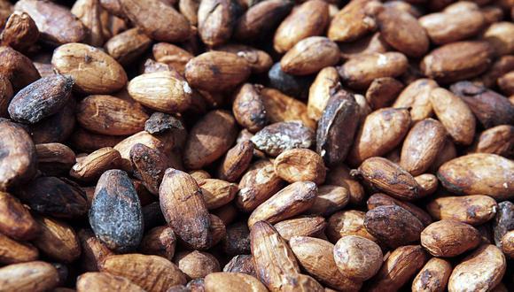 El cacao ha sido la piedra angular de las economías de los principales productores, Costa de Marfil y Ghana, durante decenios, lo que dificulta que las naciones que dependen de estas exportaciones aborden la degradación forestal.