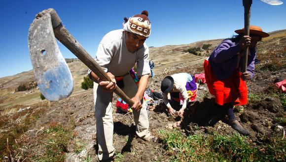 El Ejecutivo extiende la aplicación a las actividades acuícolas, de manejo y aprovechamiento forestal y de fauna (Foto: Andina).