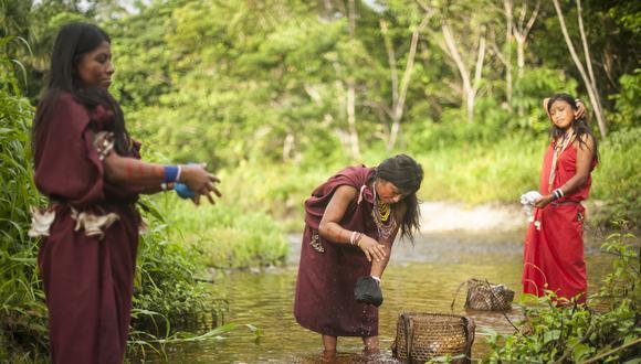 El 89% de la población que vive en la región amazónica de Perú no dispone de agua potable.