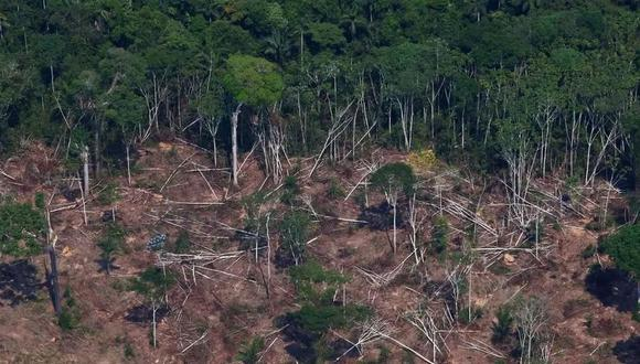La deforestación en la Amazonía brasileña ha sufrido un aumento del 41%  en mayo. (Foto de archivo: Amanda Perobelli / Reuters