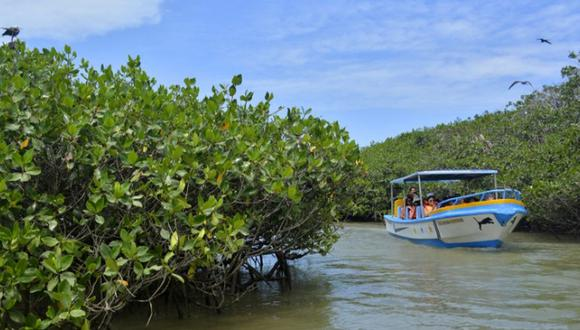 En Tumbes hay 209 empresas dedicadas al hospedaje, viajes y servicio de guías turísticos formales. (Foto: GEC)