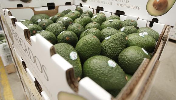 Si bien la pandemia provocó la contracción de la economía de la India, este mercado no vio afectado su consumo en frutas y verduras.