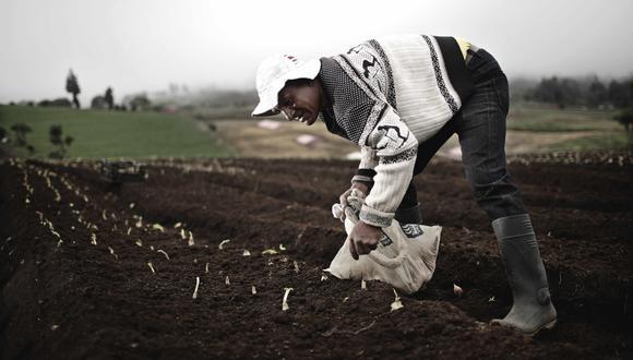 AGRO. La medida busca beneficiar a la agricultura familiar. (Foto: EFE)