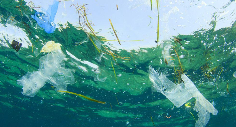 FOTO 5   5. Limpieza del océano. El mundo oceánico está siendoinvadido por el plástico, es un hecho. De ahí que la limpieza del océano sea una de las medidas más importantes a la hora de establecer un nuevo calendario anticontaminación. Debido principalmente a la ingente cantidad de plásticos que hay ahora mismo flotando sobre el Pacífico; que, según los expertos, tiene el mismo tamaño que Francia. (Foto: Difusión)
