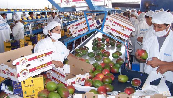 Agroexportación. (Foto: USI)
