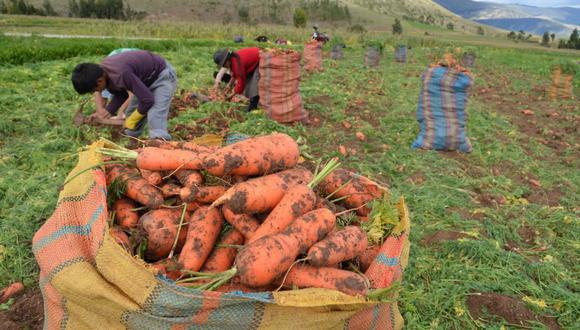 """""""Este es un punto de partida y no un punto de llegada"""", resaltó el ministro de Agricultura, Federico Tenorio. (Foto: GEC)"""
