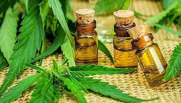 En Latinoamérica, varios países como Argentina, Chile, Colombia y México permiten de alguna forma el uso de cannabis medicinal, cuya eficacia para determinadas dolencias está reconocida por la OMS.