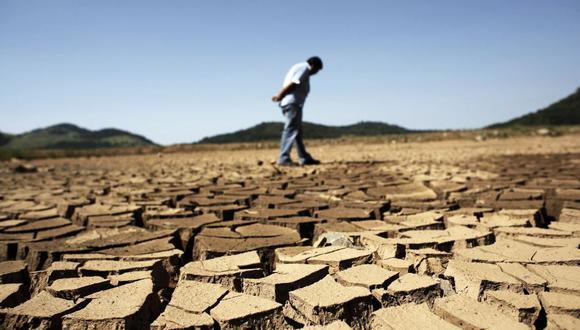 El clima cálido hasta la fecha ha contribuido a acelerar la cosecha y a aumentar el contenido de sacarosa en la caña. (Foto referencial: Reuters)