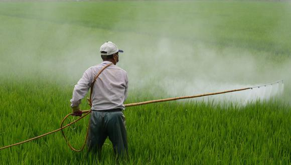 Herbicida (Foto: Pixabay)