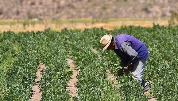 Ministro Montenegro destacó el Fondo de Financiamiento Agrario Empresarial (FAE-Agro) de S/ 2,000 millones. (Foto: Difusión)