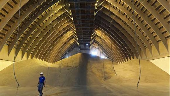 Bunge nombró nuevos líderes para el maíz y el trigo y dividió las responsabilidades del negocio de semillas oleaginosas en tres grupos.