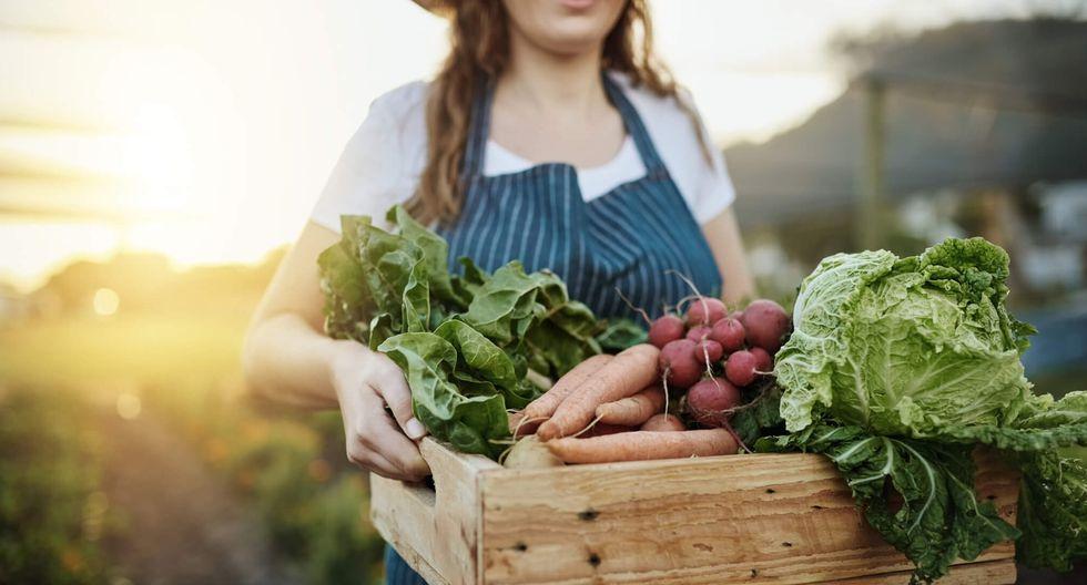 FOTO 4 |4. Venta de productos ecológicos (Venta de alimentos orgánicos/ Venta de vehículos eléctricos) (Foto: iStock)