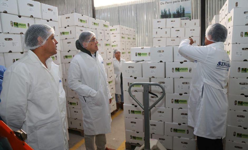 El ministro Gustavo Mostajo (lado izquierdo) visitó la planta empacadora de ajo de Aproexpo en Arequipa. (Foto: Difusión)