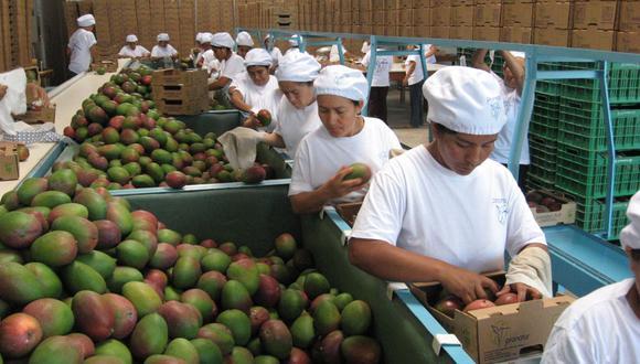 Agroexportación (Foto: USI)
