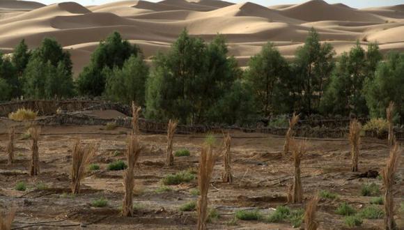 La promesa es objeto recurrente de la indignación de los países pobres, primeras víctimas de los impactos del cambio climático, que denuncian la falta de solidaridad de los Estados ricos. (Foto: AFP)