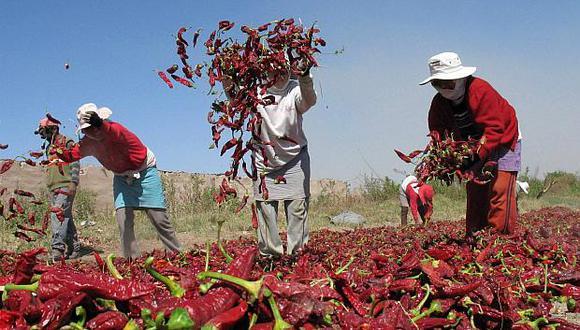 La páprika es el alimento con mayor concentración de contaminantes. (Foto: GEC)