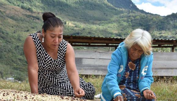 """FOTO 8   La fotografía que recibió el primer premio es esta, del pueblo zapoteco en México. """"Las mujeres indígenas de la mixteca oaxaqueña son pilares en la producción del café, realizan tradicionalmente la cosecha, limpieza y selección de los granos. De sus ventas obtienen el sustento familiar. En sus manos, no solo están marcadas las huellas del trabajo arduo sino también la conservación de sus recursos, cultura e historia; en sus ojos reflejan el amor por la tierra, este mismo amor que debe ser conservado y transmitido a las nuevas generaciones""""."""