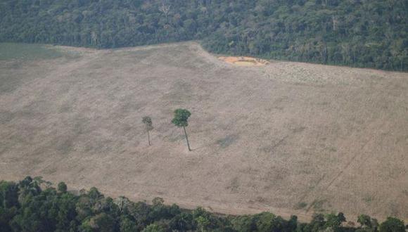 Área deforestada de la selva amazónica cerca de Porto Velho, Brasil, el 14 de agosto del 2020. (REUTERS/Ueslei Marcelino).