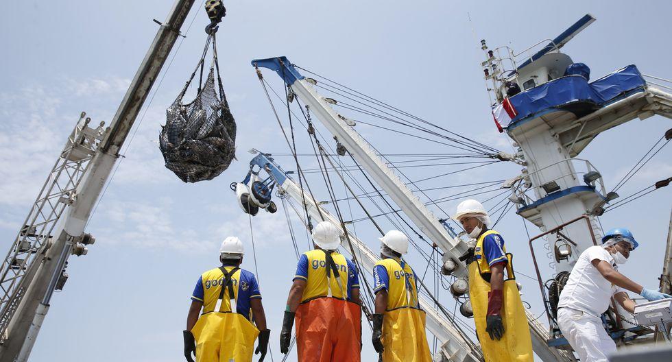 La cuota de pesca de bacalao fue fijada en 161 toneladas. (Foto: GEC)