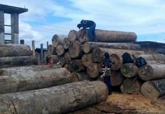 EE.UU. prorroga bloqueo impuesto a envíos de madera de Inversiones Oroza