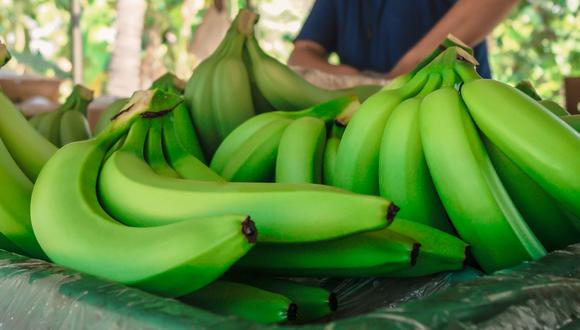 Integrantes del denominado Clúster Bananero Ecuado remarcaron la resiliencia del sector frente a la pandemia. (Foto: Andina).