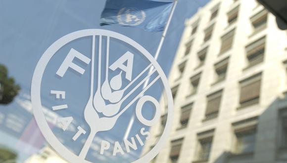 La FAO es el brazo de alimentación y agro de la ONU. (Foto: AFP)
