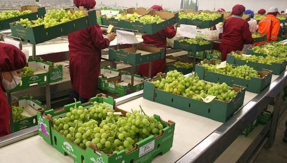 Se abren nuevos mercados para las agroexportaciones peruanas. (Foto: Andina)