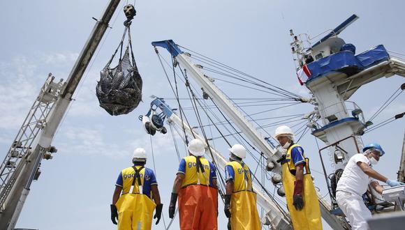 Un 64% del atún que utilizan plantas conserveras nacionales proviene de flota extranjera