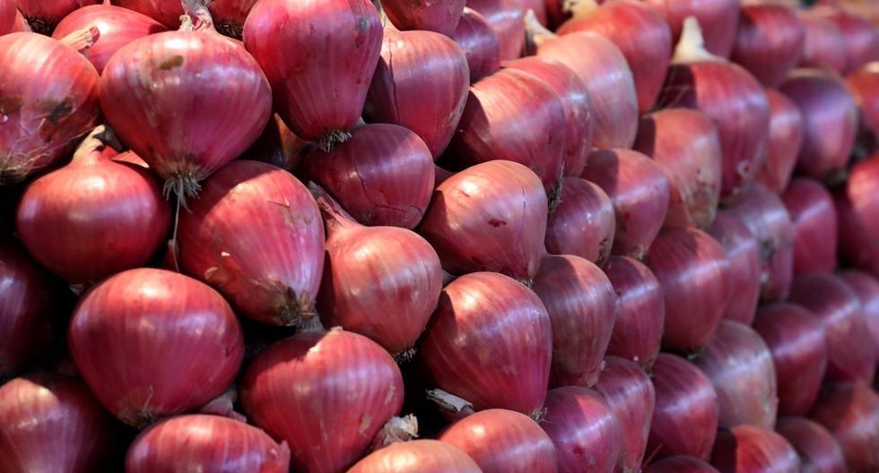 Cebolla, producto de exportación
