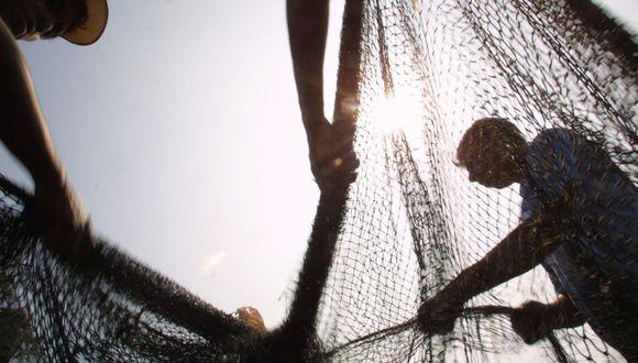 Pesca artesanal (Foto: USI)