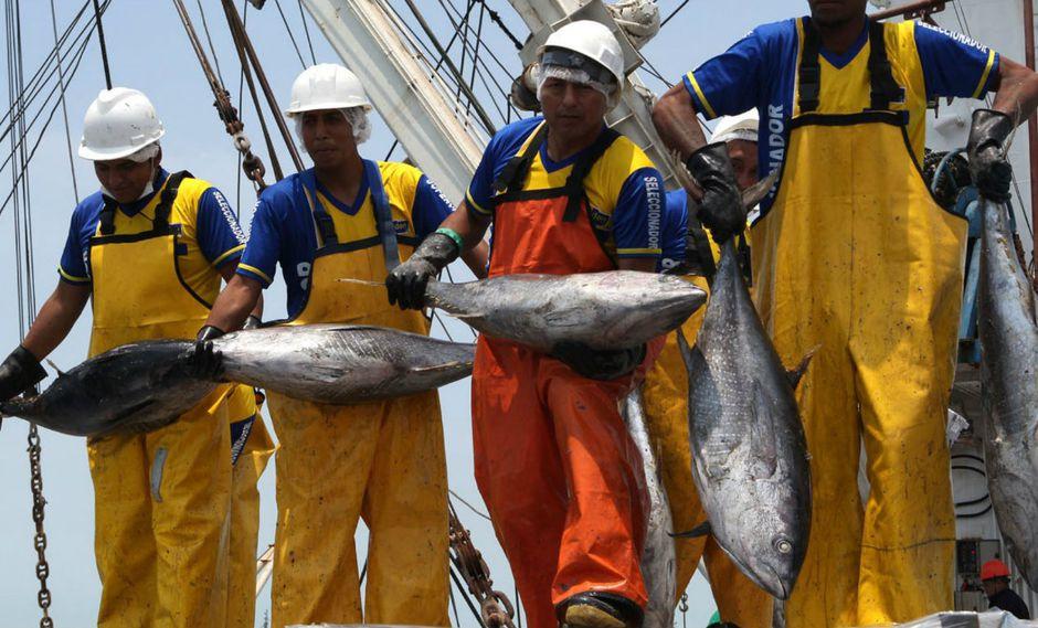 Esta regulación está dentro del Decreto Supremo N 021-2017-PRODUCE, que fija los plazos para las descargas de atún pendientes de la flota extranjera (Foto: Andina).