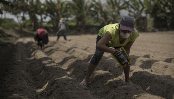 Agricultores. (Foto: Anthony Niño de Guzmán / GEC)