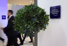 En Davos, todo el mundo quiere plantar árboles