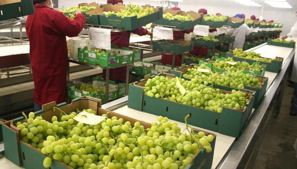 Las agroexportaciones del Perú superaron meta del 2018, según el Minagri. (Foto: Difusión)