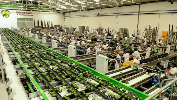 Empresas continúan a la espera de que el Gobierno emita la reglamentación de la nueva Ley de Promoción Agraria. (Foto: difusión).