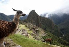 Peruanos podrán participar en concurso mundial de fotografía de Wikipedia
