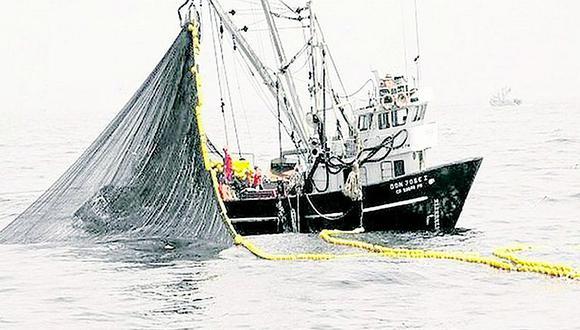 La pesca de la anchoveta fue suspendida el 15 de enero.