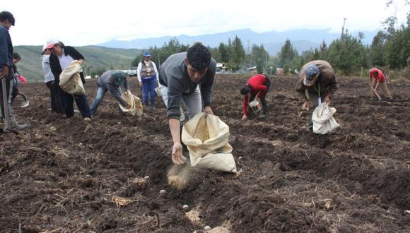 La medida busca impulsar la campaña agrícola 2020-21. (Foto: GEC)
